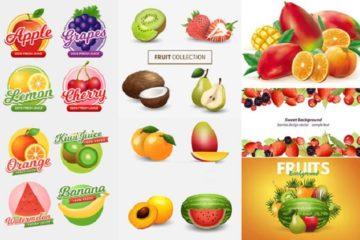 Xưởng in tem dán trái cây hoa quả giá rẻ Hà Nội