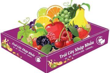 Khay giấy đựng hoa quả bán sẵn giá rẻ Hà Nội